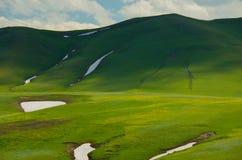 Berg met grasslland Royalty-vrije Stock Afbeelding