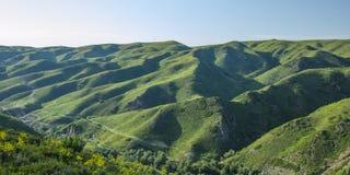 Berg met grasslland Stock Foto's