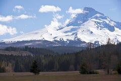 Berg met sneeuw wordt behandeld die Royalty-vrije Stock Foto's