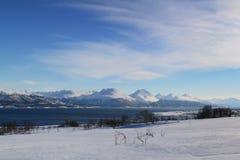 Berg mit Schnee, Bäumen und blauem Himmel im Winter in Norwegen Stockbilder