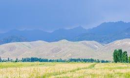 Berg nära Issyk- Kul sjön i Kyrgystan under sommarsäsong Arkivbilder