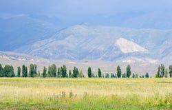 Berg nära Issyk- Kul sjön i Kyrgystan under sommarsäsong Arkivbild