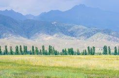 Berg nära Issyk- Kul sjön i Kyrgystan under sommarsäsong Royaltyfri Foto