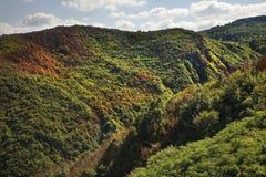 Berg nära Sighnaghi Kakheti georgia Royaltyfria Foton