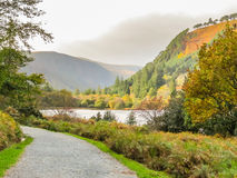 Berg nationalpark, Irland för Glendalough dal, Wicklow Royaltyfria Foton