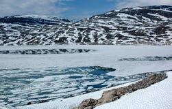 berg norway Royaltyfri Foto