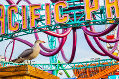 Berg-och dalbanan på nöjesfältet på Santa Monica Pier i Santa Monica, Kalifornien Royaltyfri Bild