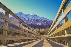 Berg och en träbro i Alaska Royaltyfria Bilder