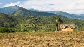 Berg och ett hus i den brasilianska bygden Royaltyfria Bilder