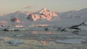 Berg och glaciärer av den antarktiska halvön i strålarna av inställningssolen stock video
