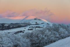 Berg och granträd som täckas av snö på solnedgången, Sibillini Arkivfoto