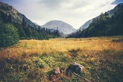 Berg och idylliskt landskap för skogdal i Abchazien Royaltyfri Fotografi