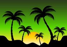 Berg och kokospalm i solnedgångtid Royaltyfri Illustrationer
