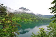 Berg och reflexioner i Alpsee sjön Arkivfoto