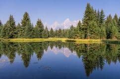 Berg och skog i lugna reflexion Arkivfoton