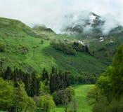Berg och skogar av Abchazien Arkivfoto