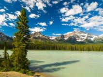 Berg och skogar i Kanada royaltyfria foton
