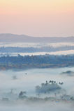 Hav av mist i morgonen Royaltyfri Bild