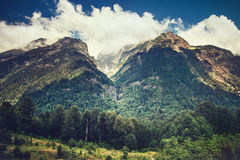 Berg och skoglandskap i Abchazien Royaltyfri Bild
