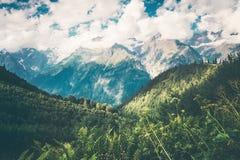 Berg och skoglandskap i Abchazien Arkivfoton