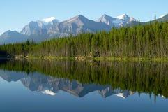 Berg- och skogreflexion i spegel sjön Arkivfoto