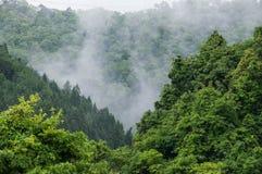 Berg- och skogsikt royaltyfria foton