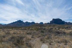 Berg och träd i öknen Arkivfoto