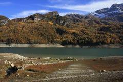 Berg och träd i Pyrenees, höst, Tramacastilla de Tena Royaltyfri Bild