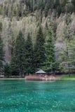 Berg och träd reflekterar i en kall sjö i Gressoney Fotografering för Bildbyråer