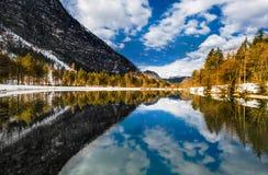Berg och träd som reflekterar i Bluntauseen i vinter arkivfoto
