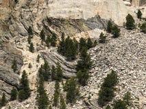 Berg och trädlandskap i South Dakota royaltyfria foton
