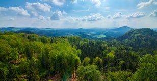 Berg och vaggar i skogen arkivfoton