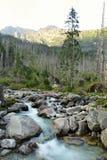 Berg och vatten Fotografering för Bildbyråer