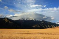 Berg- och vetefält i Peru Arkivbild