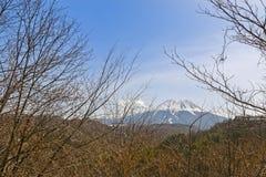 Berg Ontake (Berg Kiso Ontake) im Hintergrund während Spr Stockfoto