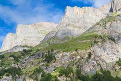 Berg op Alpen in Zwitser royalty-vrije stock foto's