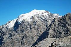 Berg ortler Italien Lizenzfreie Stockfotografie
