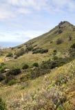 Berg på ön av Tenerife Royaltyfria Foton