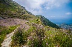 Berg på medelhavet Royaltyfri Fotografi