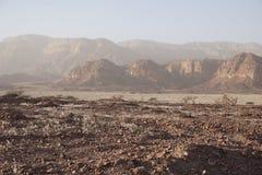 Berg på parkera Timna Arkivbild