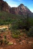 Berg på Zion National Park i USA Royaltyfria Foton
