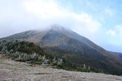 Berg Petros karpaten Ein Teil der Steigung wird mit einem Busch mit Frost umfasst Lizenzfreie Stockfotos