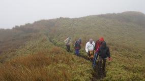 Berg Pulag-Gipfel-Spur Lizenzfreie Stockfotografie