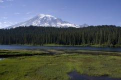 Berg Rainier Louise Lake Stockfotografie