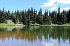 Berg Regenachtiger gebied stock fotografie