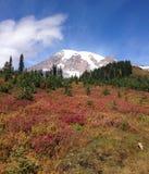 Berg Regenachtiger onder de blauwe hemel (met bloem) stock fotografie