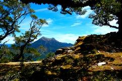 Berg Richmond Forest Park lizenzfreie stockbilder