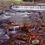 Berg river-2 Lizenzfreie Stockfotografie