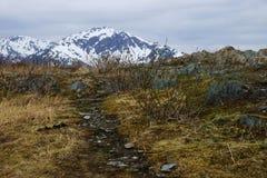 Berg Roberts Trail, Juneau, Alaska Stockfoto