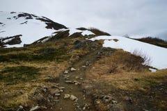 Berg Roberts Trail, Juneau, Alaska Lizenzfreie Stockfotos